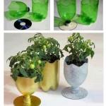Piccoli bicchieri porta vaso da bottiglia riciclata