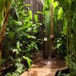 Doccia Jungle