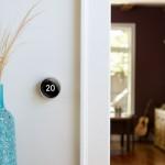Nest il termostato smart di Google, particolare