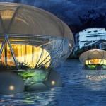 Jellyfish Lodge, Janine Hung